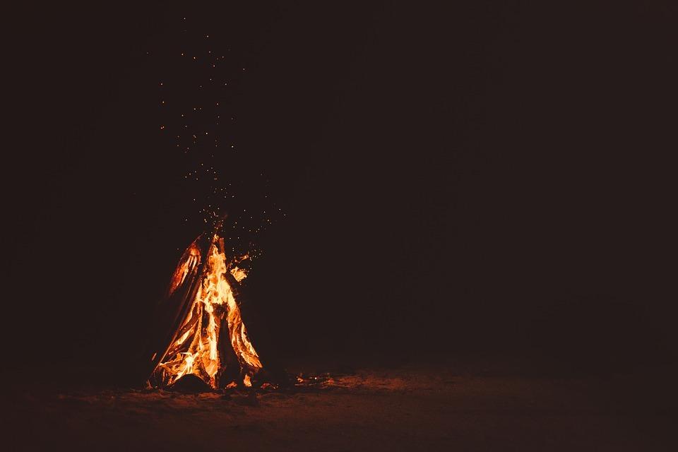 kamp ateşi yaban hayvanları