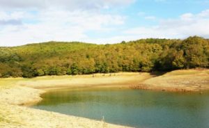 İstanbul kamp ömerli barajı nerede kamp yapılır